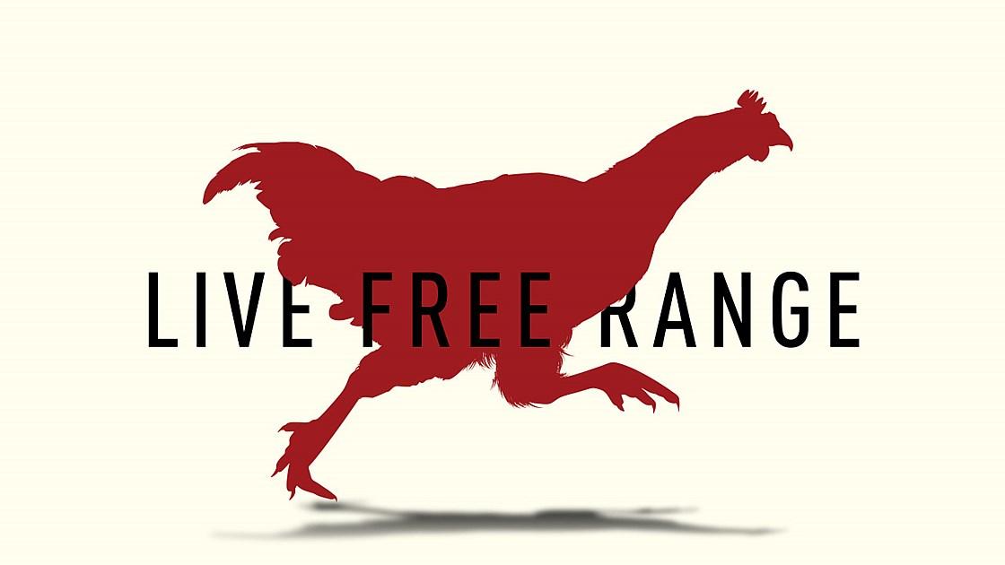 Reebok Live Free Range